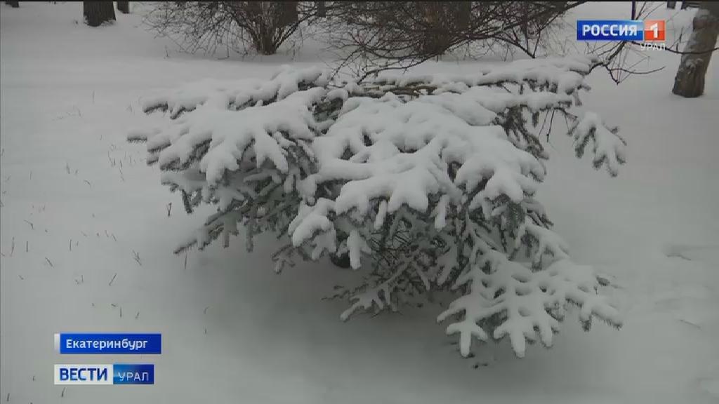 На Урале ожидаются снегопады и морозы до — 36