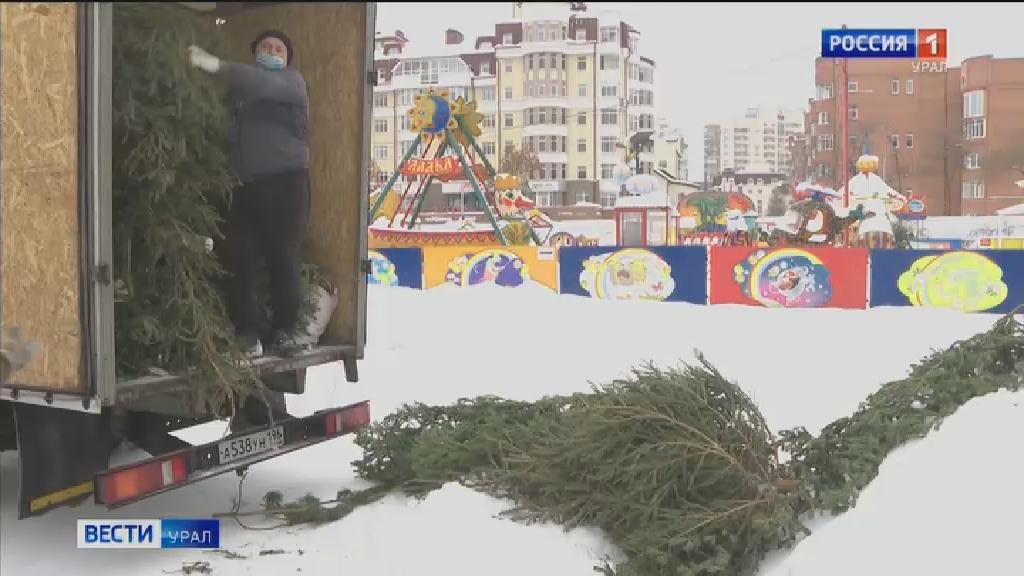 Екатеринбургский зоопарк принимает в дар ёлки, ели и пихты
