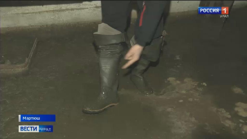 В посёлке Мартюш в доме лопнула труба и нечистоты затопили подвал