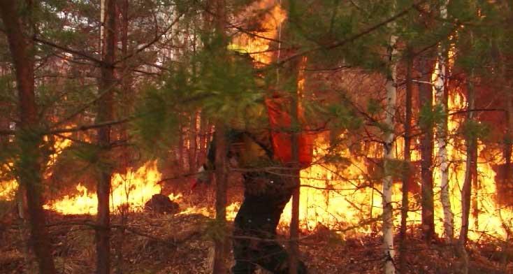 Лесные пожарные начали подготовку к сезону 2021 года