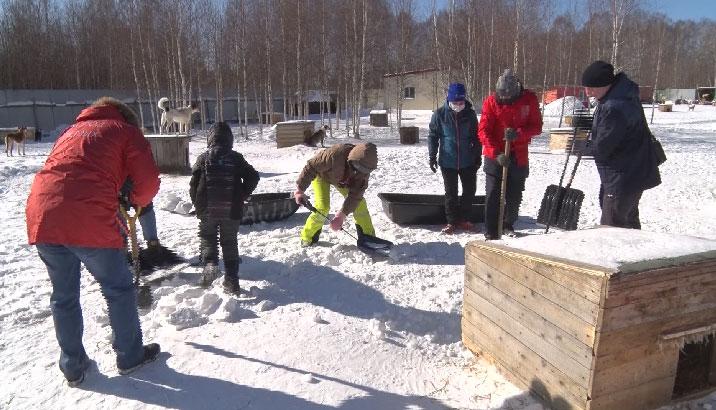 Волонтёры Первоуральска провели генеральную уборку в приюте для животных