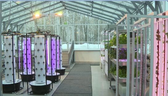 Новый центр фонда «Золотое сечение» открыли в столице Урала