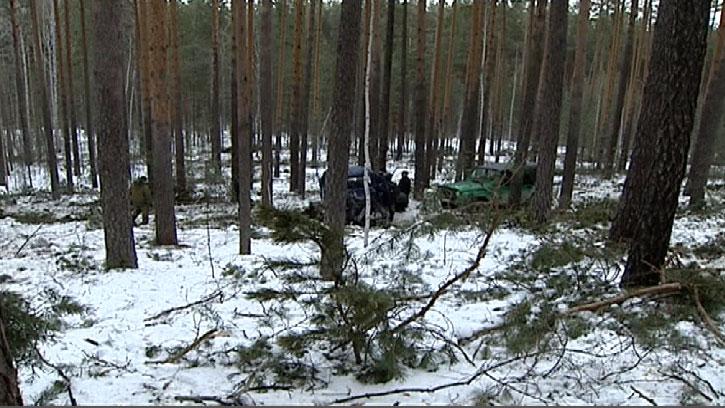 Состояние лесничеств в регионе будет отслеживаться с помощью видеомониторинга