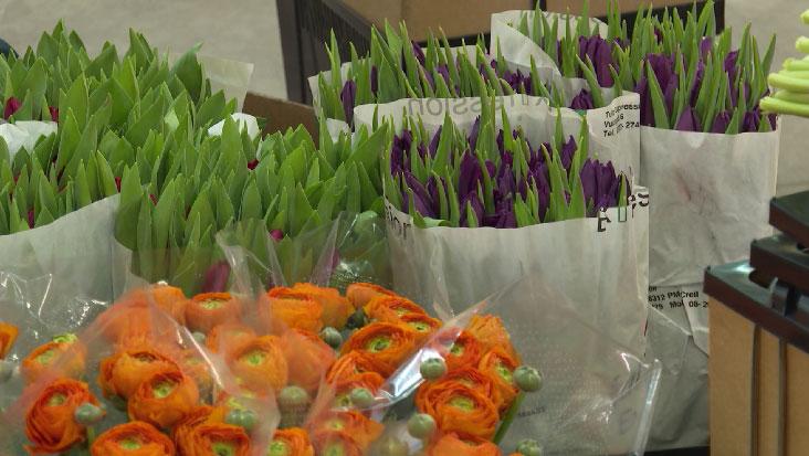 Тонны цветов к 8 Марта прибыли в Екатеринбург