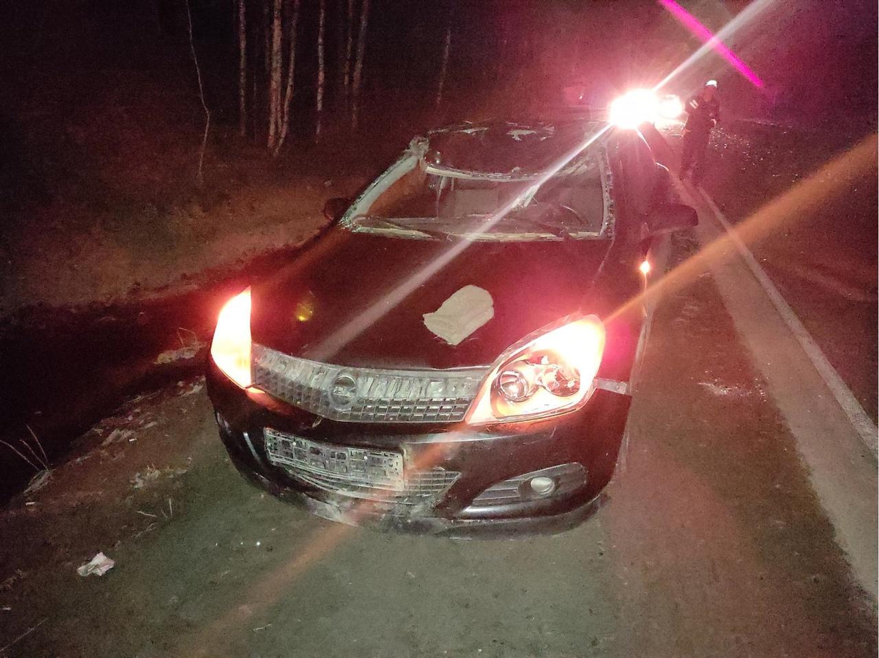 На Свердловской трассе в ДТП погиб лось
