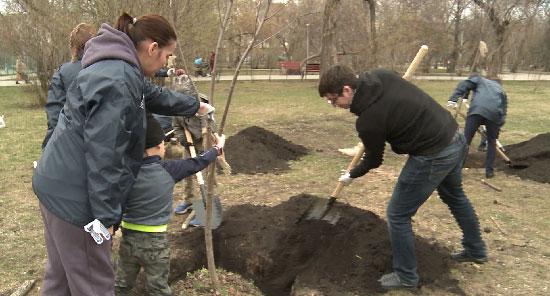 К Международной акции «Сад памяти» присоединились уральские волонтёры