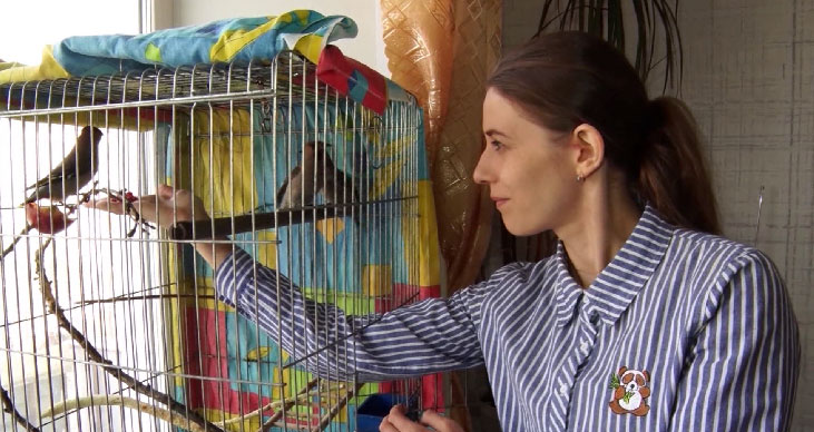 Жительница Нижнего Тагила открывает реабилитационный центр для птиц
