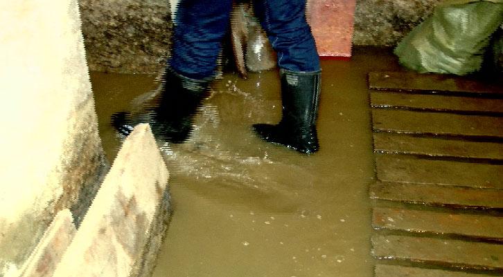 Дома тагильчан топят канализационные стоки