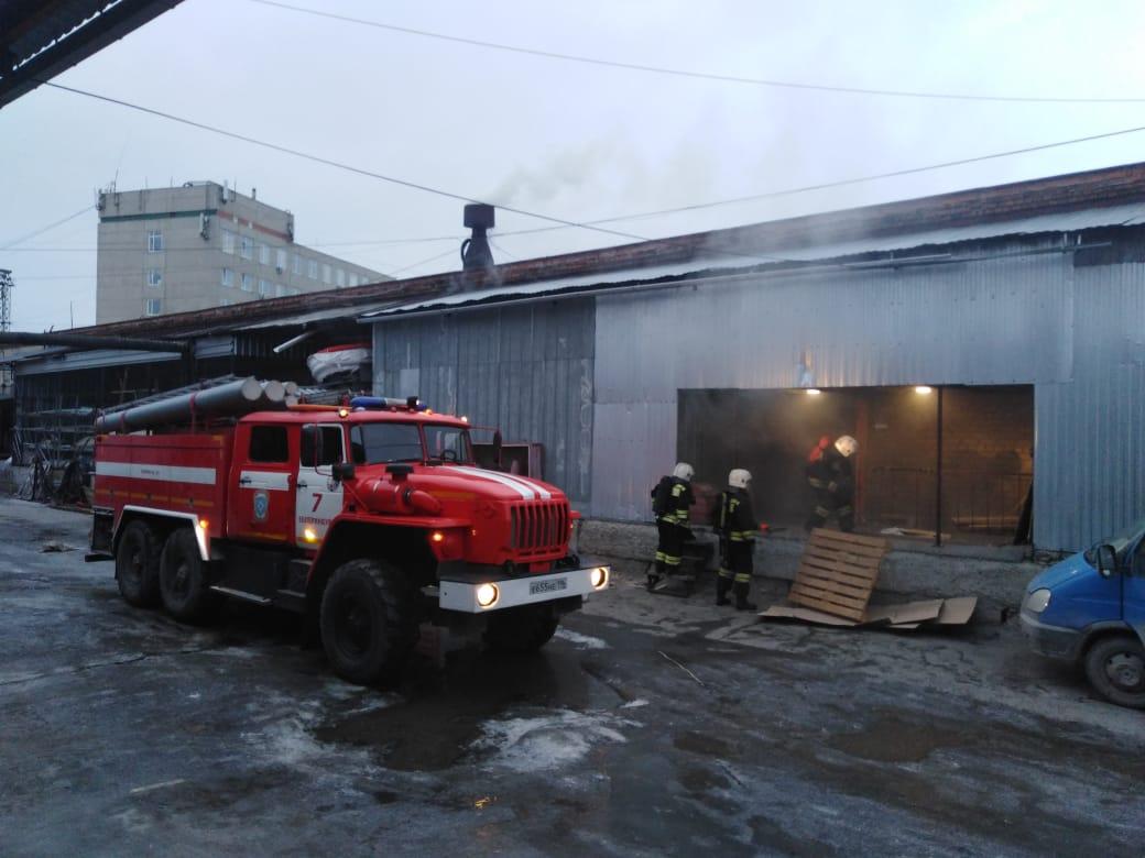 В Екатеринбурге сгорел террариум с животными