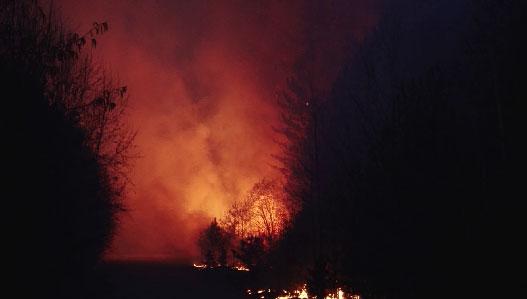 Несколько лесных пожаров зарегистрировано в Свердловской области