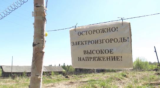 Житель деревни Ясашной установил на участке поля электрическую изгородь