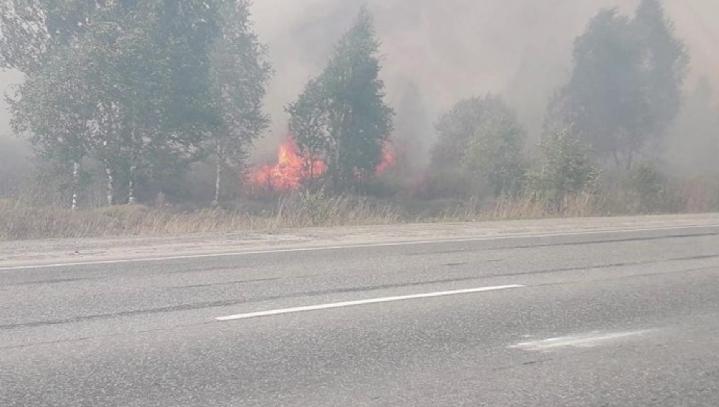 Из-за лесных пожаров закрыта часть трассы Екатеринбург-Тюмень