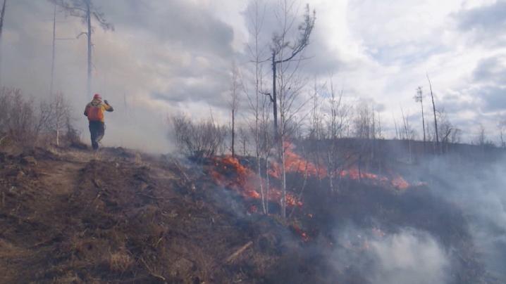 Полпред УрФО поручил наладить взаимодействие структур, задействованных в тушении пожаров