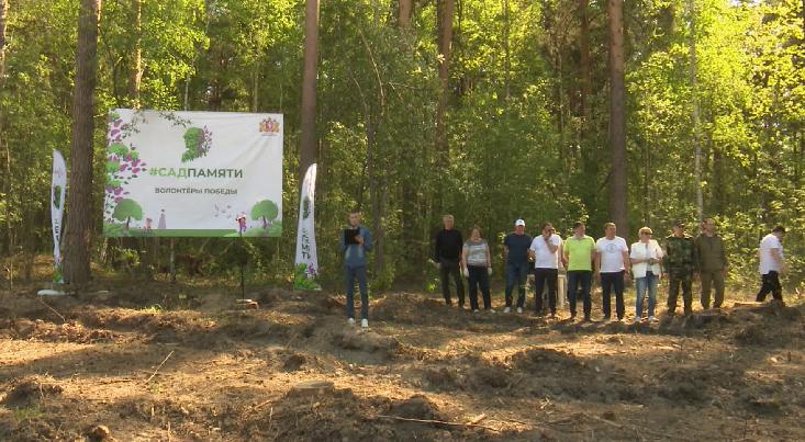 «Сад памяти» появился в Берёзовском лесничестве