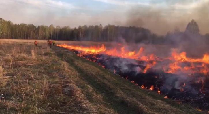 В Свердловской области продолжают гореть леса