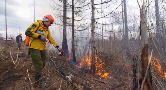 На Урале фиксируются новые лесные пожары