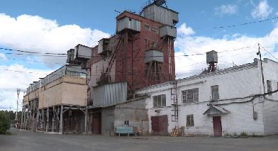 Среднеуральская птицефабрика закрывает производство