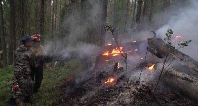 В заповеднике «Денежкин камень» локализован второй пожар