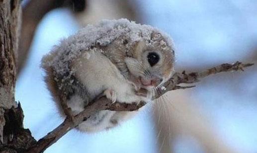 В Екатеринбурге холодает