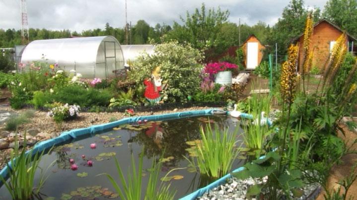 Лучший садовый участок выбирают в Нижнем Тагиле
