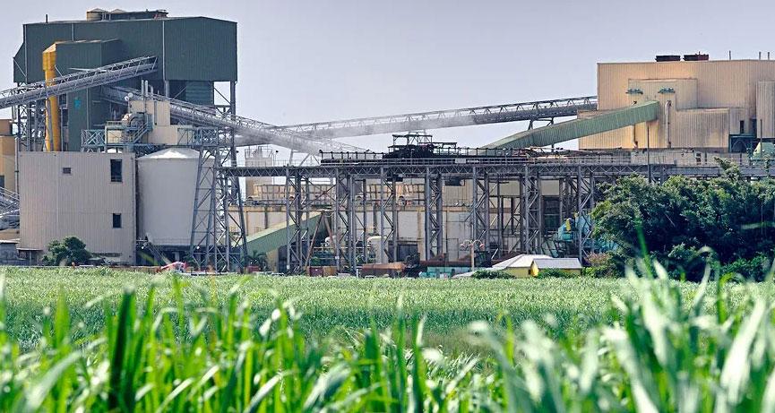 Три экозавода планируют построить в Свердловской области