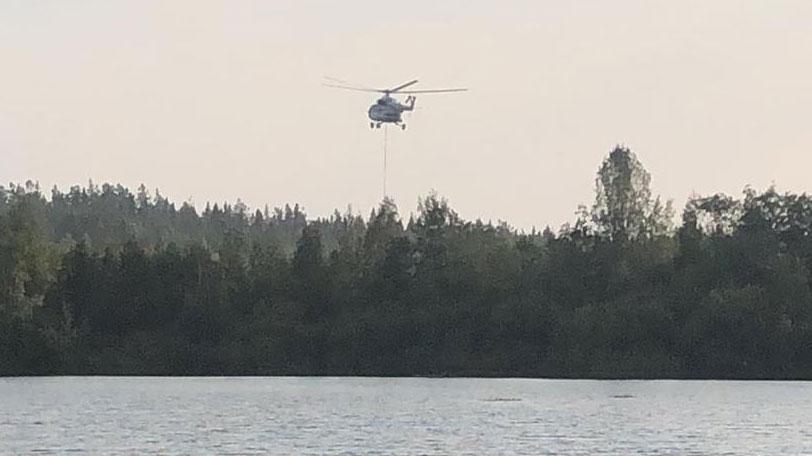 В Свердловской области за сутки ликвидировали 14 природных пожаров