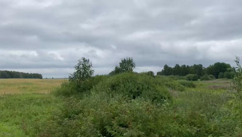 В Ирбитском районе нитратным азотом загрязнены гектары земли