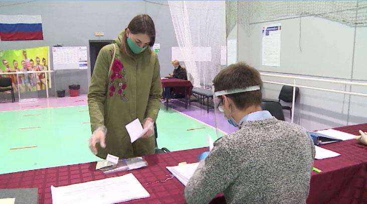Представители Общественной палаты будут следить за ходом голосования