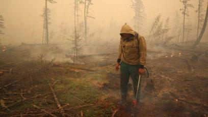 Борьба с лесными пожарами продолжается