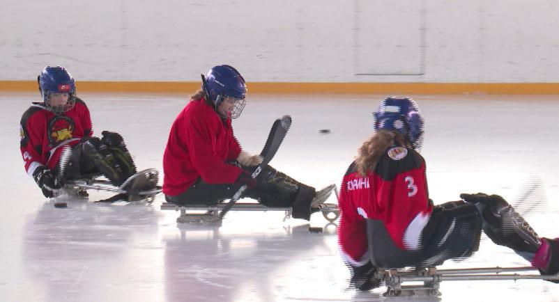 Десятки ребят с ограниченными возможностями объединил следж-хоккей