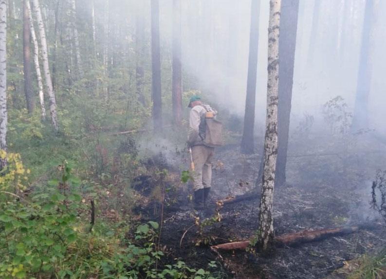 Дым от пожаров окутал Екатеринбург