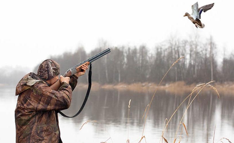 Бизнесмен во время утиной охоты застрелил приятеля