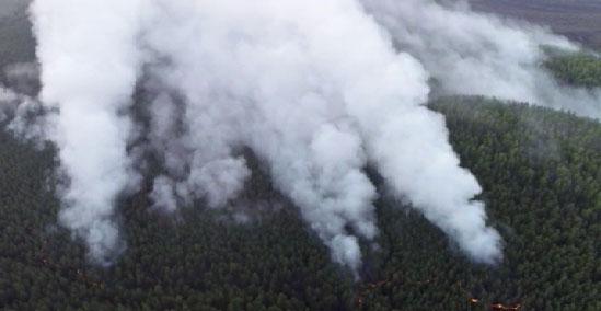 На Урале полыхает две тысячи гектаров леса