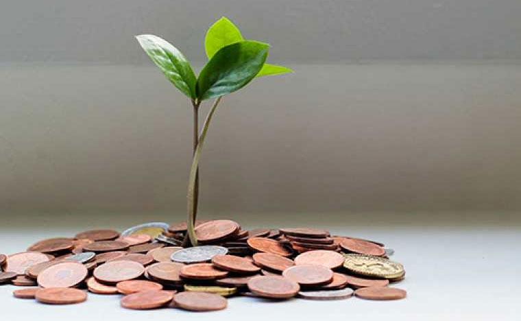 Министерство финансов оценило управление бюджетом в области