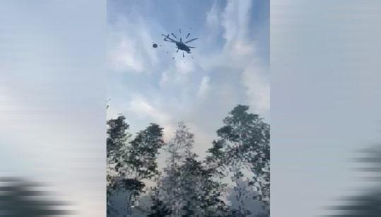 Площадь лесных пожаров в регионе увеличилась с 3 до 6 тысяч гектаров