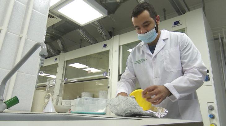 Учёные УрФУ создают антиоксидантные сыры и йогурт