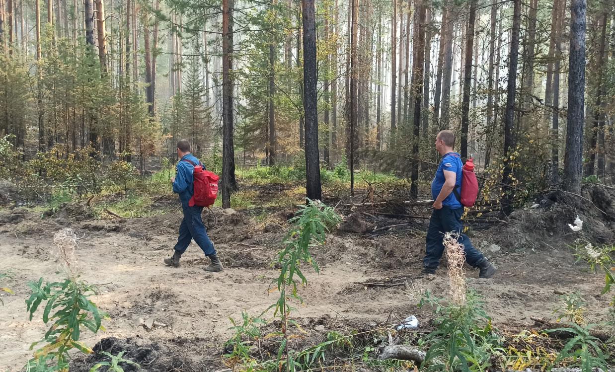 Сотрудники МЧС продолжают тушить природные пожары
