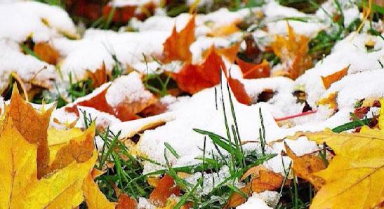 В Карпинском ГО выпал первый снег