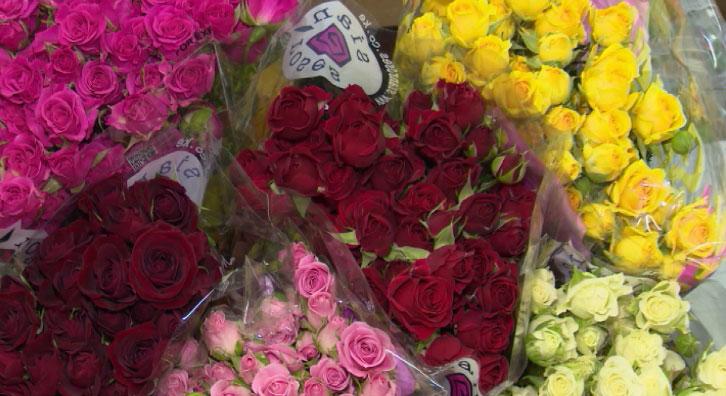 Тонны цветов доставили в Екатеринбург ко Дню знаний