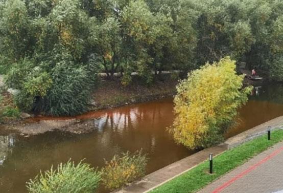 Вода в Исети окрасилась в коричневый цвет
