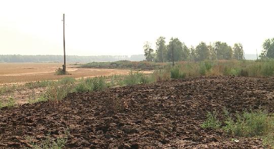 Россельхознадзор выявил нарушения в утилизации отходов животноводства под Сухим Логом