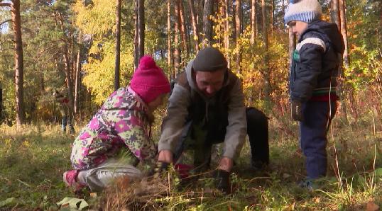И взрослые, и дети: уральцы присоединились к акции «Сохраним лес»