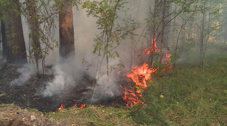 В регионе сохраняется повышенная пожароопасность