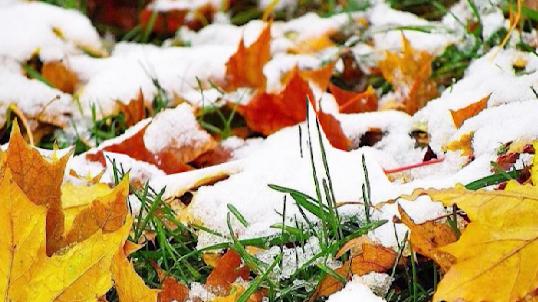 В выходные в Екатеринбурге пролетел первый снег