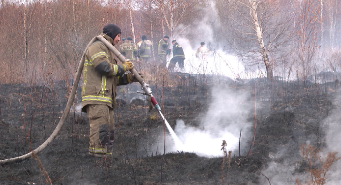 В Екатеринбурге тлеет 120 гектаров торфяного болота