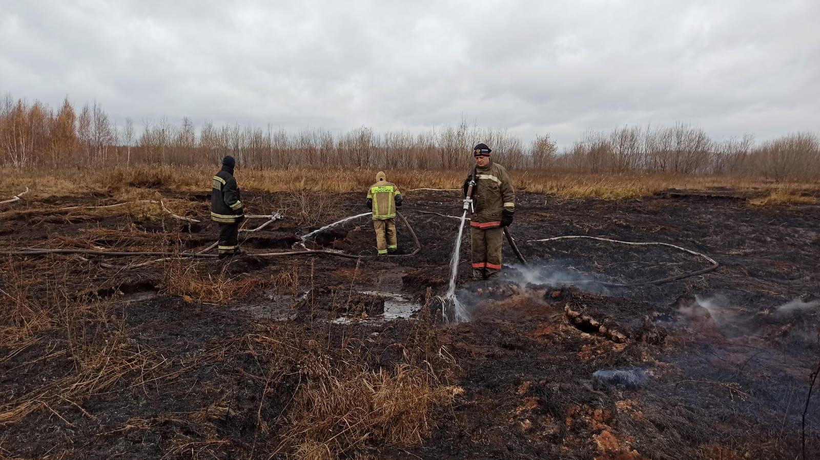 Тление торфа в Екатеринбурге локализовано